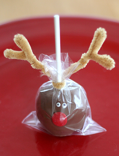 Blog_reindeerpop_wrapped