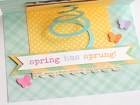 Blog_springcards_sprung